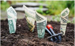 Investir aujourd'hui pour récolter demain