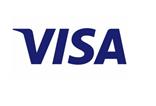 Visa logo 3